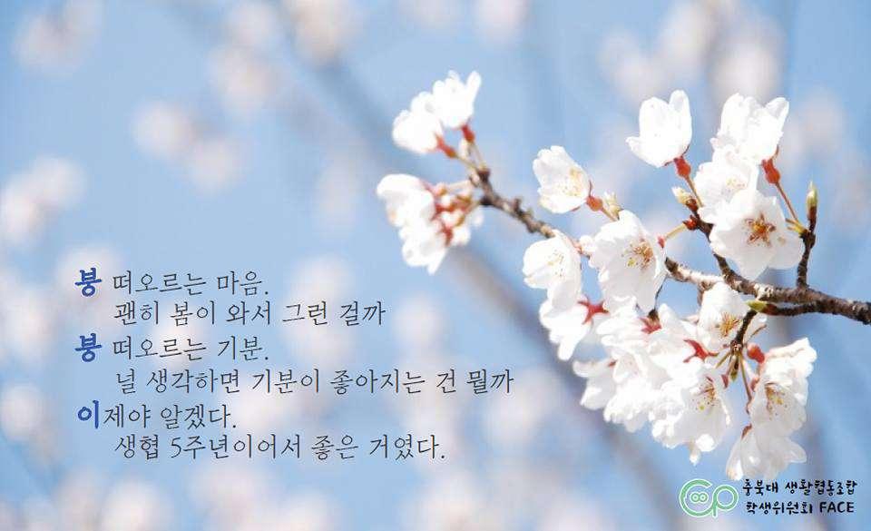 2017_04_충북대_이행시2